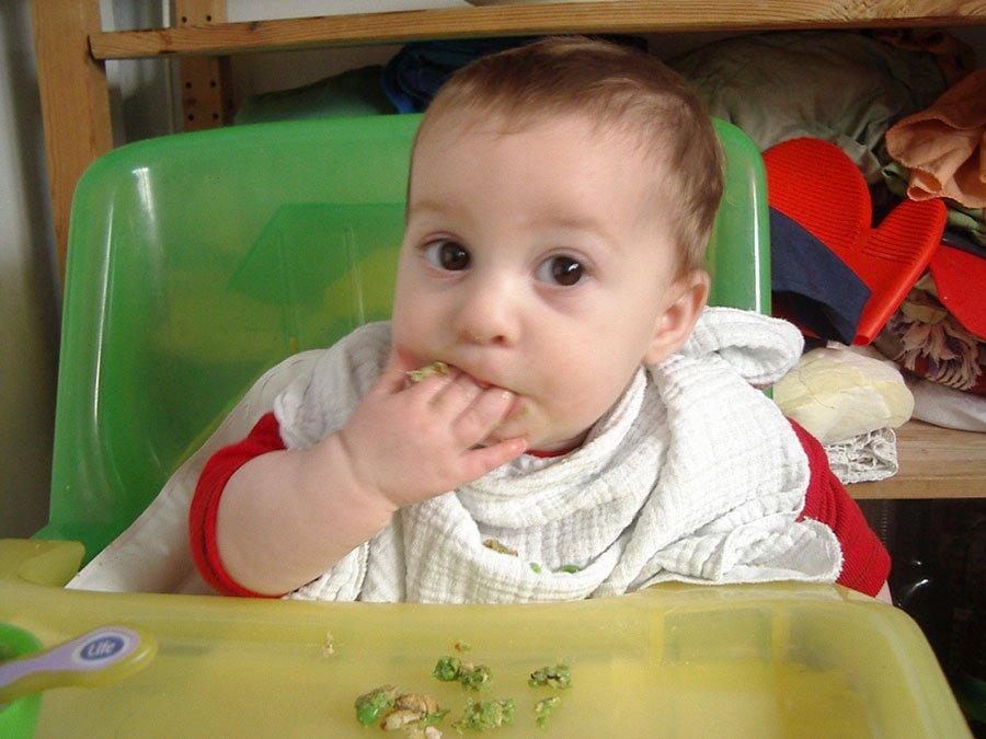 Las legumbres en la alimentación del bebé