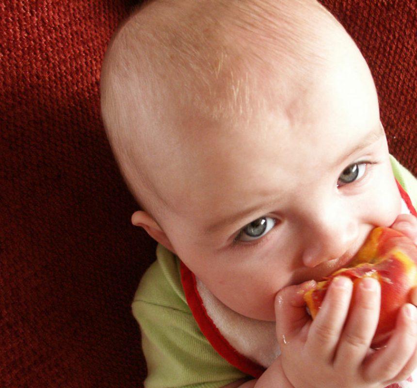 Alimentación infantil y alimentos alergénicos