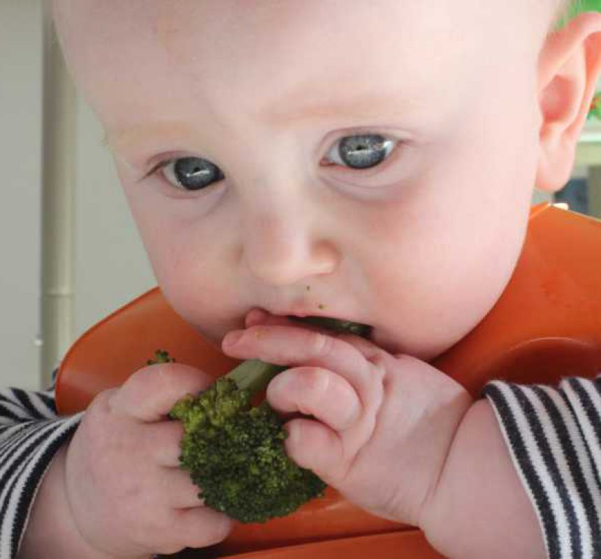 Cosas curiosas de Baby Led Weaning